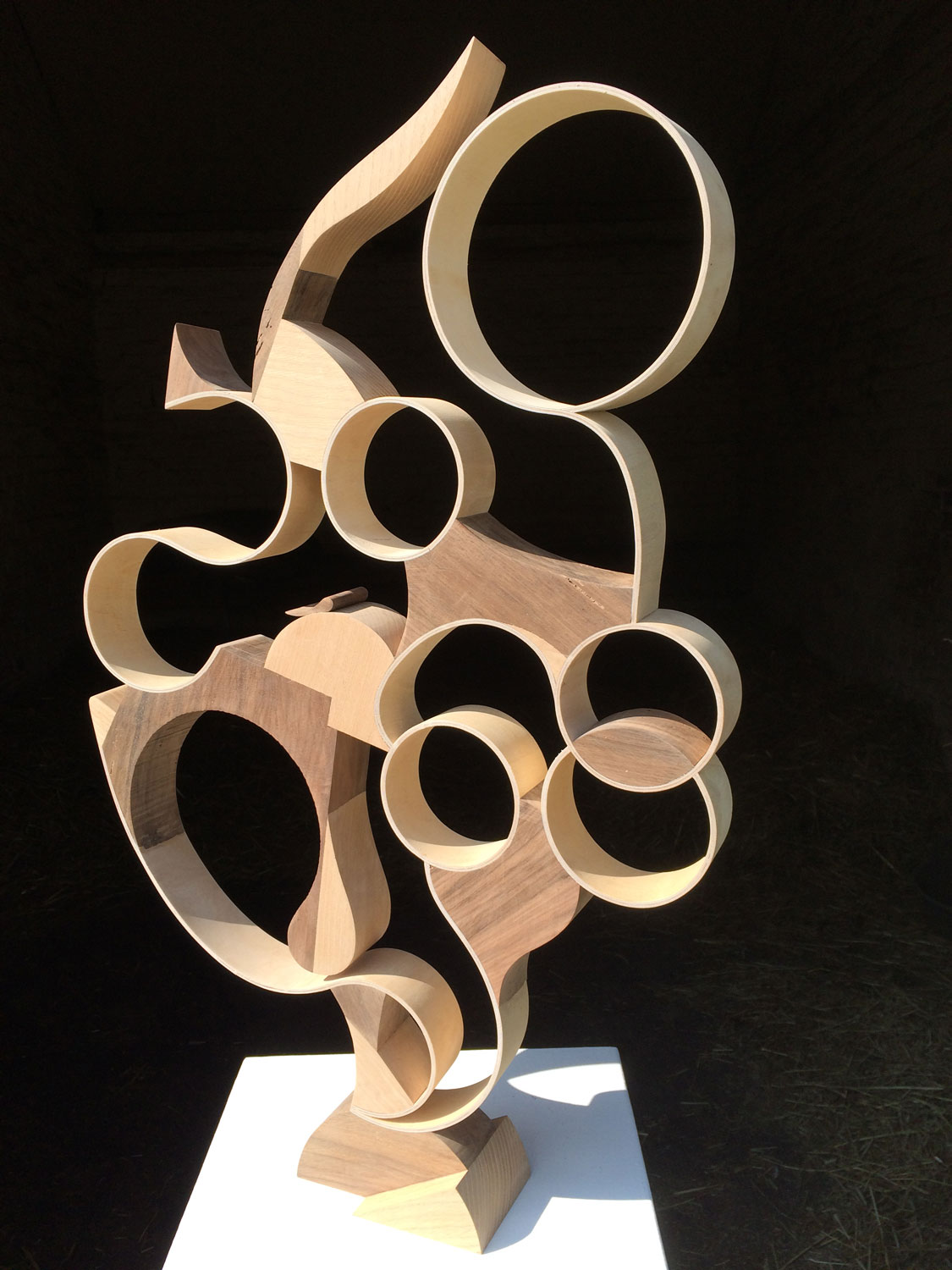 Wood and plywwod sculpture 'Morning Glory'