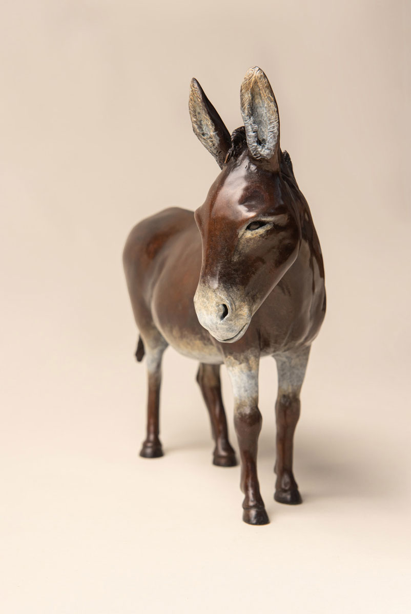 'Quercy' the donkey by Diana Pattenden